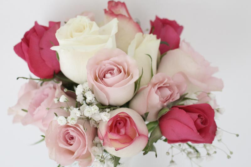 Standard-Bouques-PinkCream-Roses
