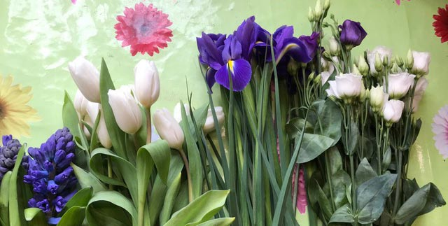 Featured caring for flowers
